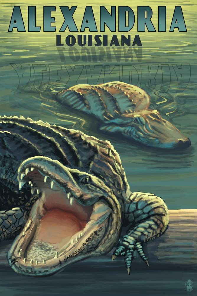 Alexandria Louisiana - Alligators Giclee 36x54 Gallery Super intense SALE Print Free shipping anywhere in the nation