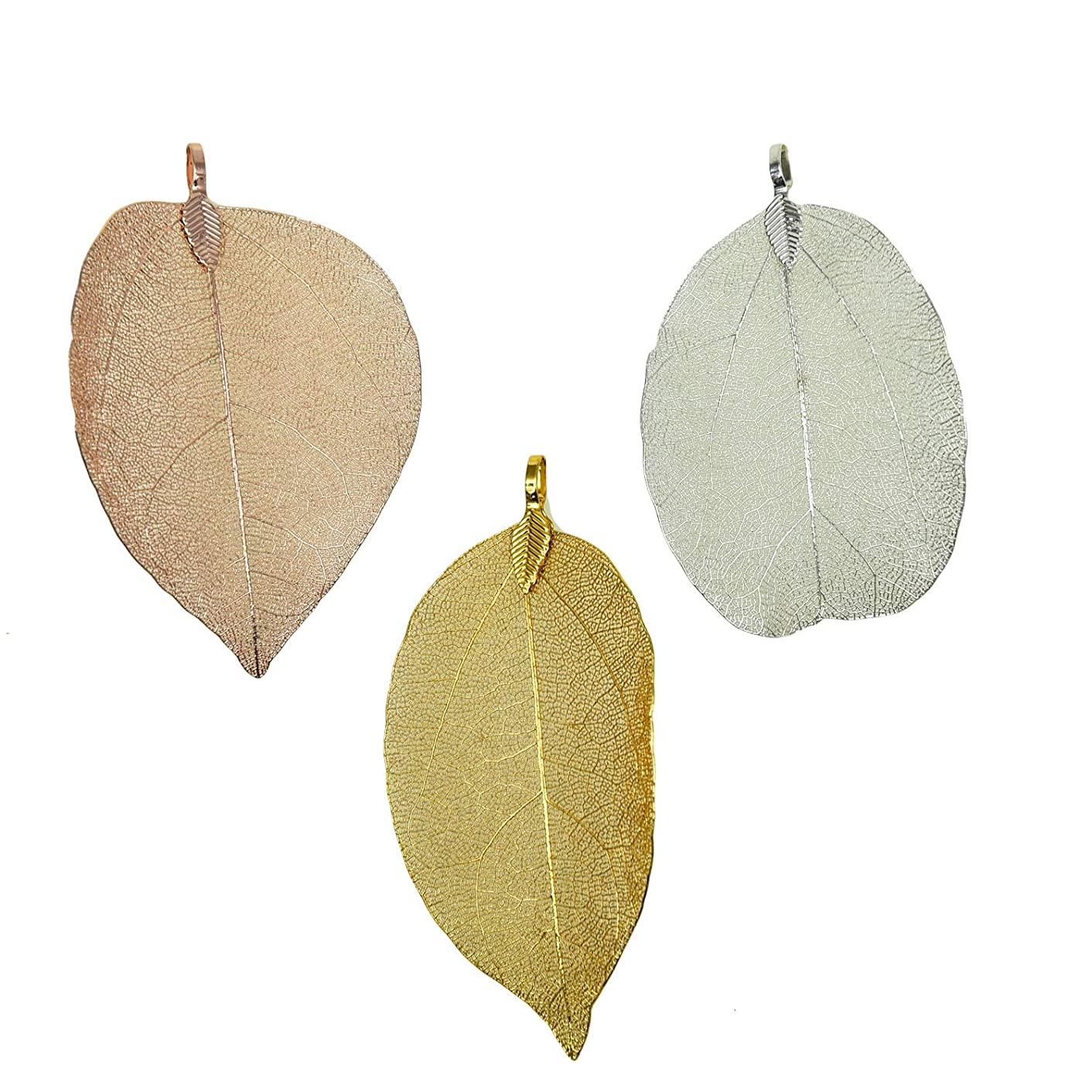 Monrocco 6Pcs Mixed Color Natural Leaf Pendant,Filigree Leaf Charm Natural Real Leaf for Jewelry Making