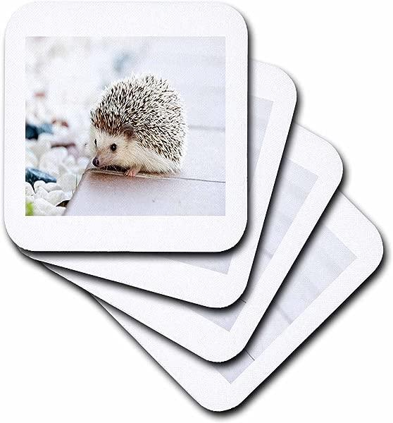 3D Rose Image Of Adorable Hedgehog Close Up Soft Coasters Multicolor