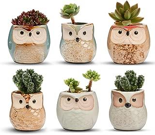 T4U Ceramic Succulent Pots Mini Size Flowing Glazed Planter Set of 6, Cute Owl Bonsai Pots Home Office Decoration Desktop Windowsill Gift for Baby Shower Birthday