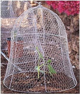 chicken wire garden cover