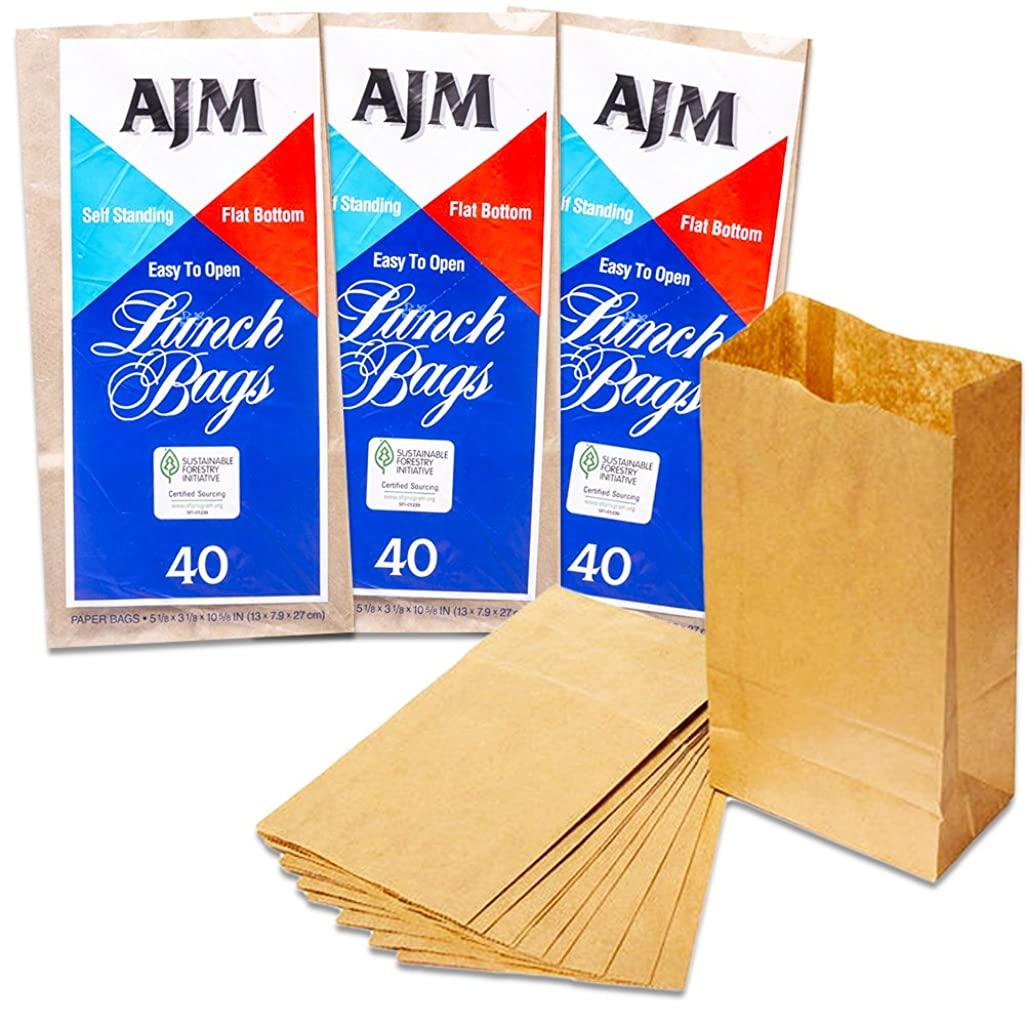 Paper Lunch Bag (120 Count)