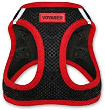 simply wag harness