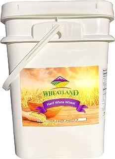 Hard White Wheat Berries • 25 Pound Pail • USA Grown • Non-GMO • Lab Tested • Premium Baking Quality • Sproutable • Whole ...