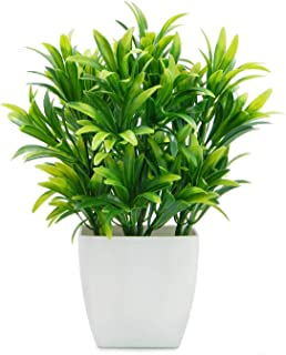 DecoratingLives Artificial Potted Plant, Jade, 9.5 Inch