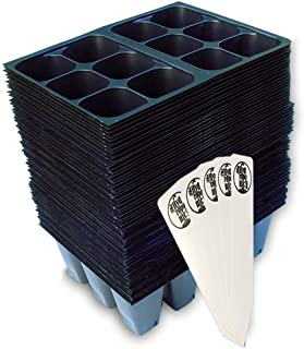 Seedling Starter Trays, 720 Cells (120 Trays - 6 Cells Per Tray) + THCity Stakes