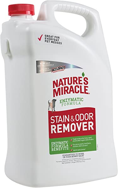Nature S Miracle Stain And Odor Remover For Dogs Enzymatic Formula Dog Stain Odor Remover