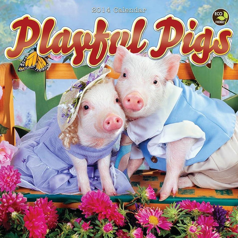 減る濃度付添人Playful Pigs 2014 Calendar