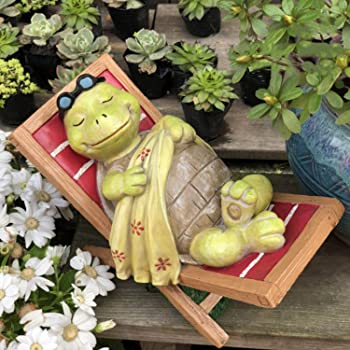 Real Life Baby Tortoise Home or Garden Decoration M.E.G Cards /& Gifts Vivid Arts XRL-BT02-F