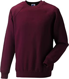Russell Mens Casual Classic Sweatshirt Long Sleeve Pullover Crew Neck Sweater