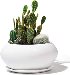 Potey Ceramic Plant Flower Pots - 6.9