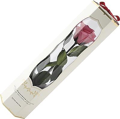 プリザーブドフラワー 一輪 ヴェルディッシモ メディアベルローズ ブライダルピンク 白箱リボン 花径:約45~50mm