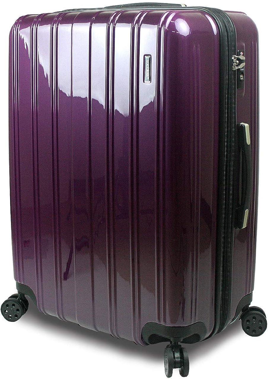 マートワット木製[サクセス] スーツケース 超軽量 TSAロック 搭載 レグノライト2020~ 大型 Lサイズ ミラー加工 超軽量 ダブルファスナー