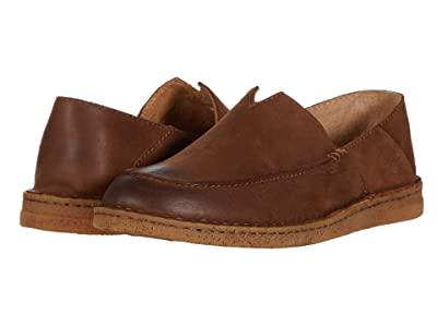 Born Stewie II (Brown Nubuck) Men