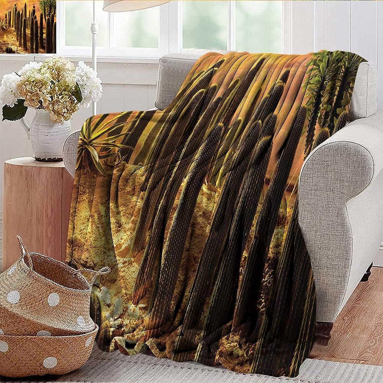 Xaviera Doherty Weighted Blanket for Kids Cactus,Sunset in Wild Desert Soft Summer Cooling Lightweight Bed Blanket 50 x60