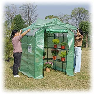 Greenhouse Small Greenhouse 2 Layer Garden Beginner Complete Kit Flower Seeds UV Resistant Patio Cover Waterproof Shady Ra...