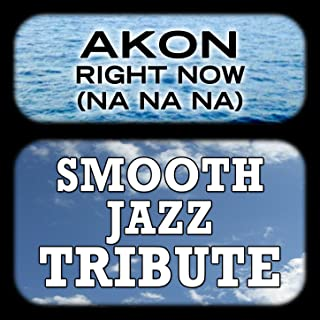 Right Now (Na Na Na) (Akon Smooth Jazz Tribute)