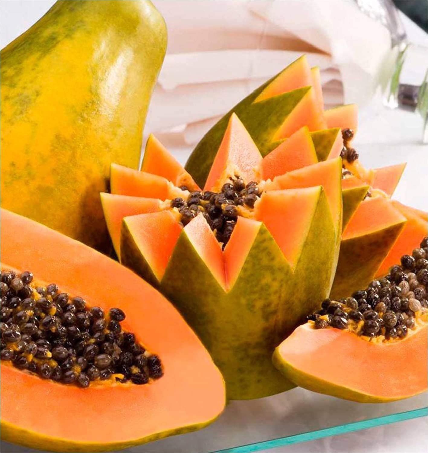 Crystal Papaya famous Animer and price revision Nanha Sel 30 Pack of Multicolor 2 Seeds