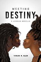 Meeting Destiny: A Lesbian Novella (The Destiny Trilogy by Tamara M. Allen Book 1)