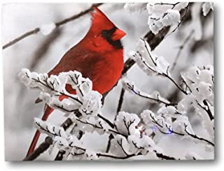 Cardinal Canvas Print - Red Cardinal on a Snowy Branch - LED Lighted Print with 40 Fiber Optic Lights in The Branches - Winter Scene Christmas Pictures
