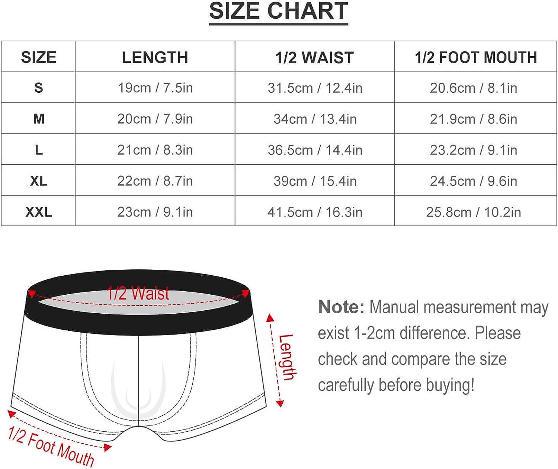 AngelSept Mens Underwear Boxer Brief Leaf Singapore Plumeria Tropical Breathable