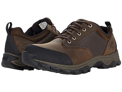 Timberland Keele Ridge Waterproof Leather Low (Brown) Men