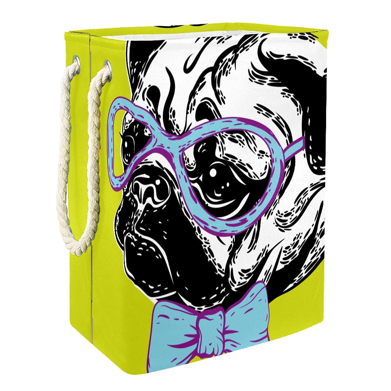 Storage Basket Dog Glasses Cheap bargain Bin Organizer Chest To Organizing for mart