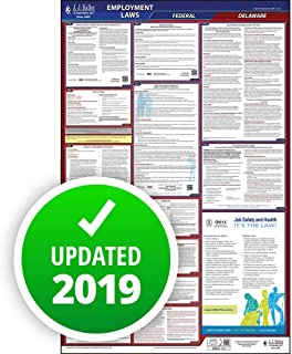 2019 Delaware Labor Law Poster, All-in-One OSHA Compliant DE State & Federal Laminated Poster (26