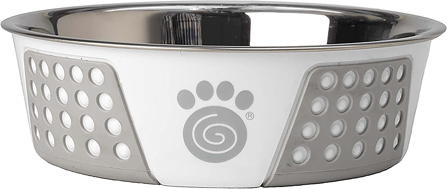 PetRageous 13094 Fiji Outstanding Ranking TOP16 Stainless-Steel D Non-Slip Safe Dishwasher