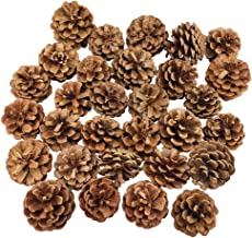 30PCS Natural Christmas Pine Cones Bulk for Craft Home Ornament Winter Holiday Home Decor Vase Bowl Filler