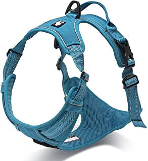 babylove harness