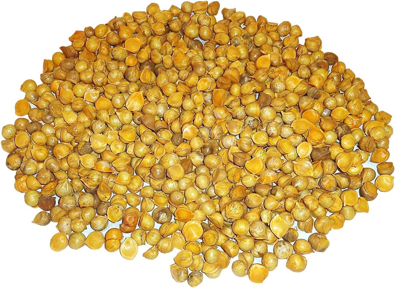 San Antonio Mall Japanese Garlic AJO Japones 100% Weights Lb Natural Bulk 30 Max 68% OFF