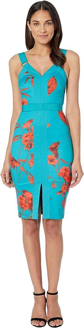 6f8c5efd6 Ted Baker Amylia Berry Sundae Bodycon Dress at Zappos.com