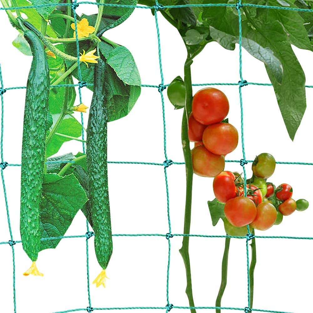 Trafagala Raleigh Mall 2021 spring and summer new Trellis Netting for Climbing Trell Plant Plants Garden