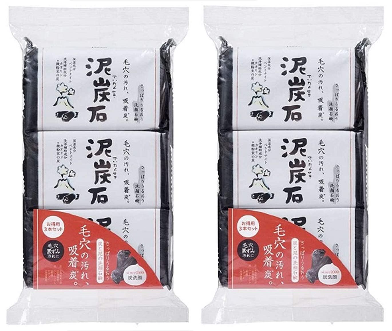 会計統治する複製する(まとめ買い)ペリカン石鹸 泥炭石 110g×3個 ×2セット
