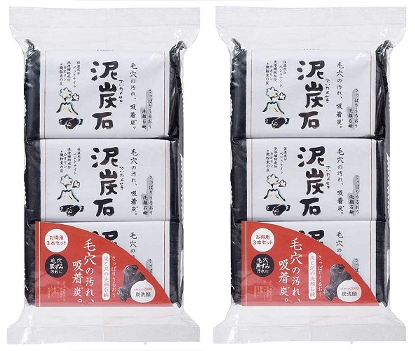 製作振動させる起きる(まとめ買い)ペリカン石鹸 泥炭石 110g×3個 ×2セット