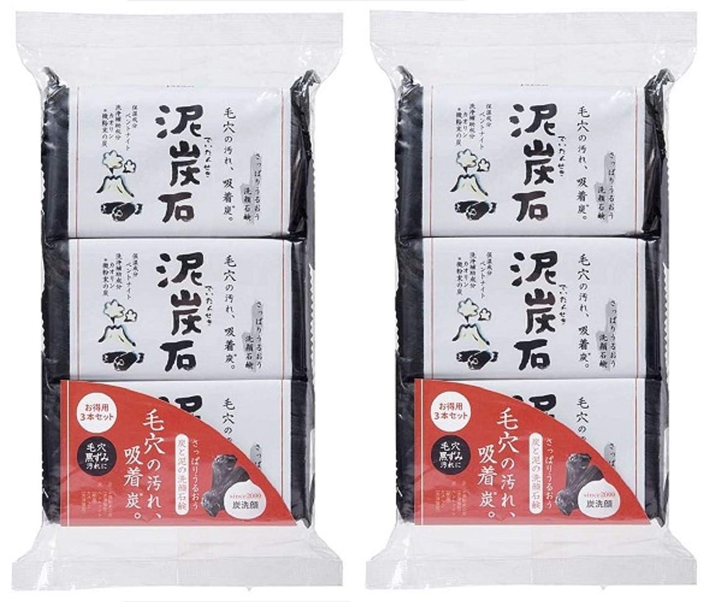 雑種好戦的などこにも(まとめ買い)ペリカン石鹸 泥炭石 110g×3個 ×2セット