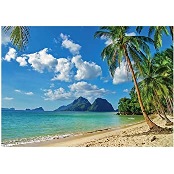 9x16 FT Seaside Vinyl Photography Backdrop,Relaxing Scene on Remote Beach with Palm Tree Chairs and Boats Panoramic Picture Background for Party Home Decor Outdoorsy Theme Shoot Props