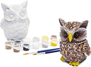 Bright Creations Owl Pet Rock Painting Kit with 12 Paint Pods, 2 Paint Brushes, and 2 Owls (2 Sets, 16 Pieces)