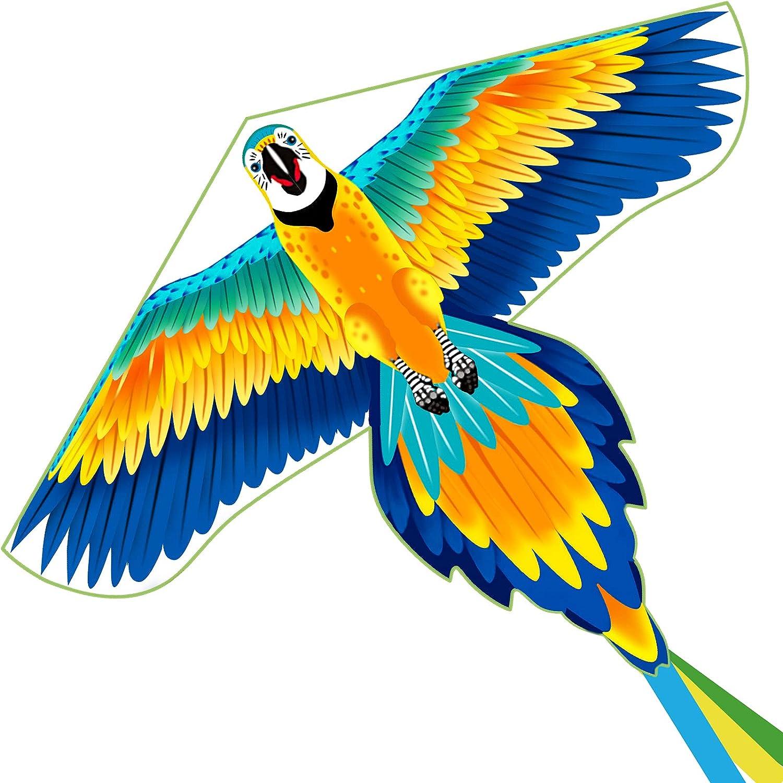 Kites for Kids, Parrot Kites for Kids 55