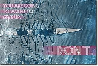 Introspective Chameleon Rowing Motivational Poster 12