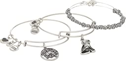 Pawsitive Vibes Bangles Set of 3