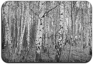 Natural Black White Birch Trees Doormats Anti-slip House Garden Gate Carpet Door Mat Floor Pads