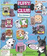 Cool Things Pack Of 10 Random Puppy Club (Series 3) Mini