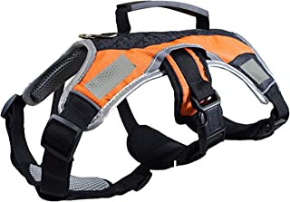 Peak Pooch Dog Walking Lifting Carry Harness, Support Mesh Padded Vest, Accessory, Collar, Lightweight, No More Pulling, T...