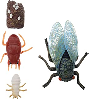 IMIKEYA 4pcs Cicada Toy Life Cycle Figures of Cicada Insect Biology Science Cicada Models Model Toys Educational Toys for Kids