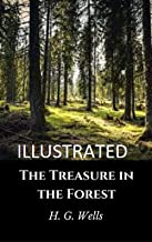 The Treasure in the Forest Illustrated