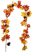 vensovo Fall Maple Leaf Garland - 6 Ft Autumn Artificial Berries Sunflower Pumpkin Leaves Garland Decorations, Thanksgivin...