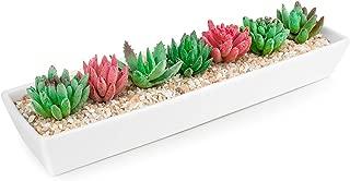 HOMENOTE Larger Rectangle Planter Pots (Size:15.5 x 4 x 2.1 inch) for Mini Succulents Long White Ceramic Succulent Planter Pots with Drainage Hole