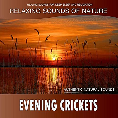Evening Crickets: Relaxing Sounds of Nature by Healing Sounds for